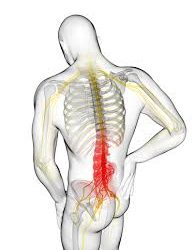 Exercises For Lower Back Pain For When At Work London
